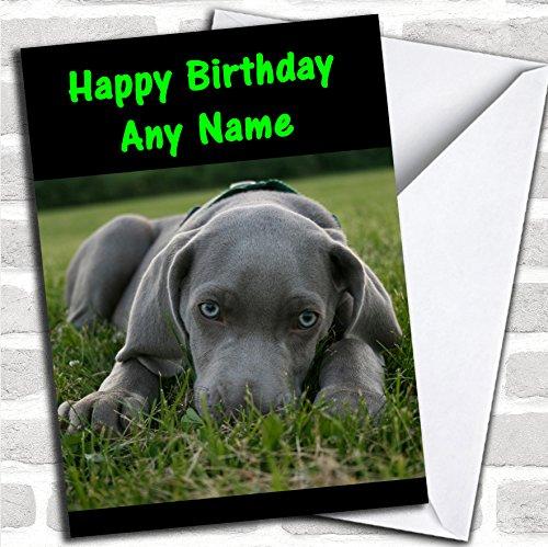 Weimaraner Hond Verjaardagskaart Met Envelop, Kan Volledig Gepersonaliseerd, Verzonden Snel & Gratis