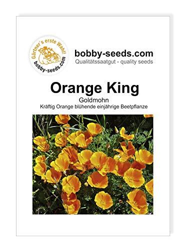 Orange King Goldmohn von Bobby-Seeds Portion
