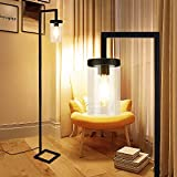Depuley LED Floor Lamp with Hanging Glass Shade, Metal Industial Floor Lamps for Living Room,Study,Bedroom, Eye Protection Reading Standing Lamp, Black,Warm White (6W A60,E27 Edison Bulb Included)