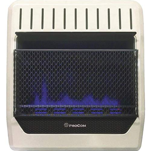 PROCOM HEATING MGT20BF 20,000 BTU Dual Fuel Blue...