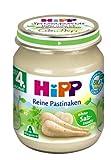 HiPP Reine Pastinaken Bio, 6er Pack (6 x 125 g)