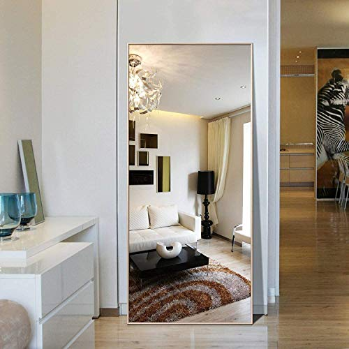 Hans&Alice Full Length Floor Mirror, Bedroom Dressing Mirror Standing or Wall Mount (65''x24'')