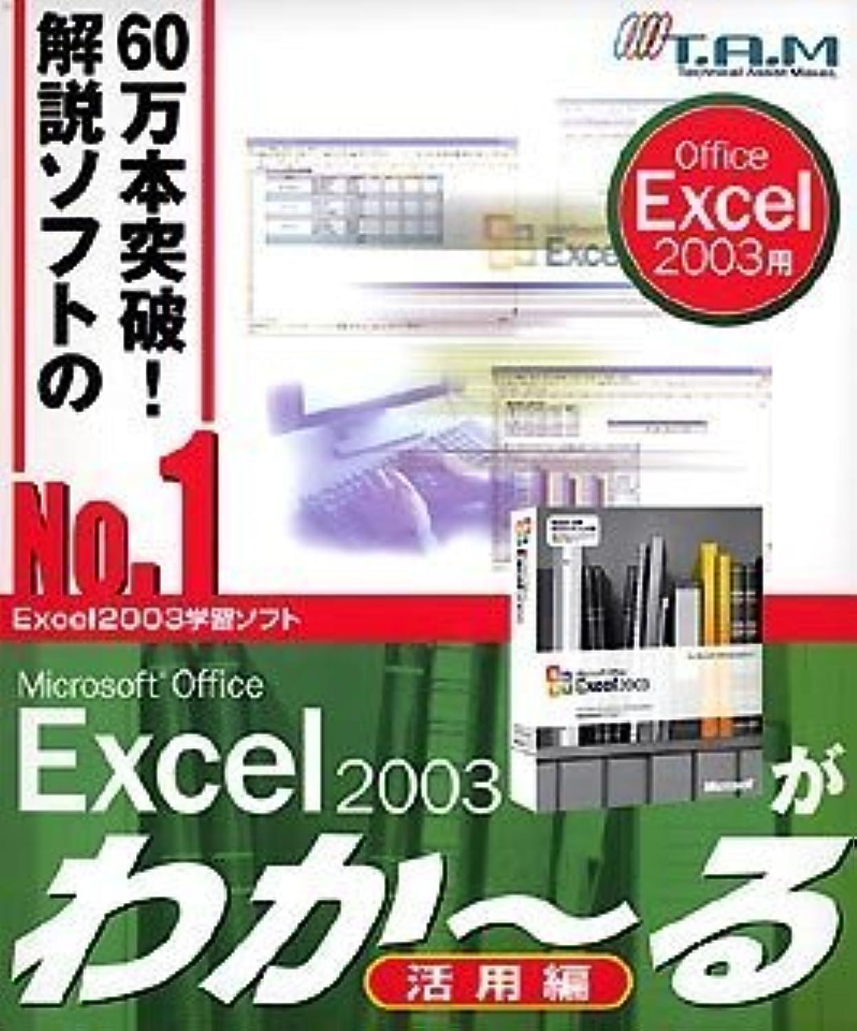 自慢モザイク談話Microsoft Office Excel 2003が わか~る(活用編)