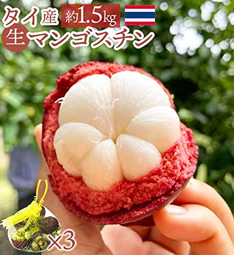 タイ産 マンゴスチン 送料無料 訳あり サイズ不揃い 約1.5kg 生 生鮮 フレッシュ 甘み & 酸味 果物の女王