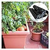 RT-OSXE 0.5mm Flexible Fischteichfolie, Reißfest Draussen Garten Teichfolien, Faltbar Undurchlässige Folie für Balkon Blumentopf Pflanzen, Anpassbar (Color : Black (0.5mm), Size : 5mx6m)