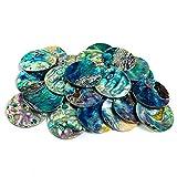 FUNNX Concha de caracola,Decoración de estrellas de mar,Accesorios de concha natural de 2 piezas DIY