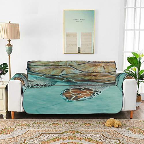 Sea Turtle Cancún México Turtle Preserve Sofá Fundas de Spandex Sofá para Mascotas Cojín Silla Sillón reclinable para sofá de 45'(114 cm) Proteger de niños Perros Mascotas