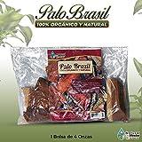 Log wood Natural Herbs PALO BRASIL tea Pack Herbal infusion 4 oz