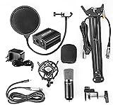 IMG-2 neewer nw 700 microfono professionale