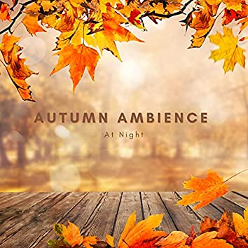 Autumn Ambience At Night