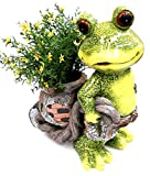 Pflanzgefäß Frosch mit Pflanztopf 37 cm groß Pflanzer Dekofigur Frosch Gartendekofigur Pflanzfigur Terrassenfigur Pflanztopf Dekofrosch Froschfigur