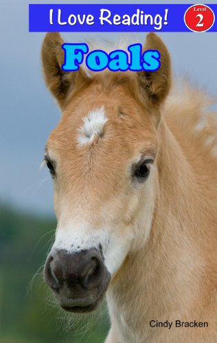 Foals - Baby Horse (An I Love Reading Level 2 Reader)