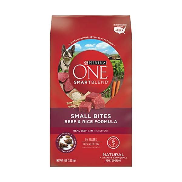 Purina ONE SmartBlend Natural Adult Dry Dog Food