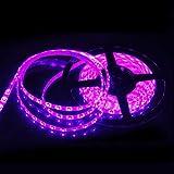 SUSAY Waterproof Purple LED Strip 3528 SMD 300LED 5M Flexible Lamp Light 12V 60LED/M