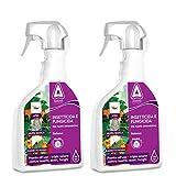 KOLLANT 2X Spray Insetticida Acaricida Funghicida, 3 in 1, Tripla Azione| per Rose e Arbusti Fioriti, Piante in Vaso e Ornamentali| Piante e Rose Fiorite Protette Rigogliose (2X Spray Insetticida)