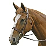 Exselle Equestrian Tack