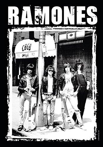 empireposter The Ramones – CBGB Photo – Drapeau – Taille 75 x 110 cm