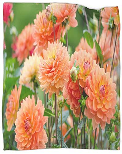 SSKJTC Digitaldruck Decke Blumen Dahlie Bloom Schlafsaal Bett Babybett Reisen Picknick 101,6 x 127,7 cm
