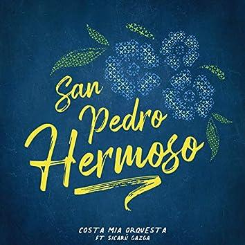 San Pedro Hermoso