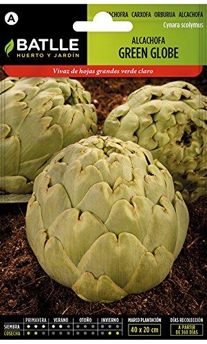 Batlle Gemüsesamen - Artischocke Green Globe (60-90 Samen)