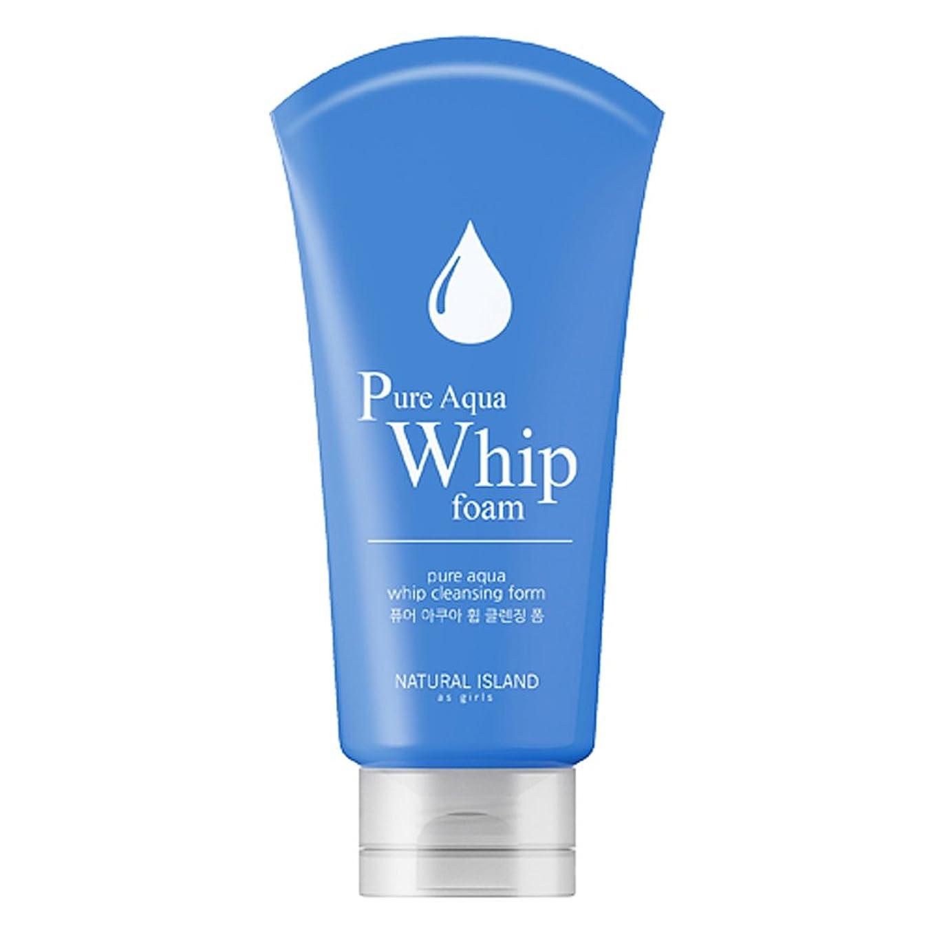 耕す復活非行Natural Island Pure Aqua Whip Cleansing Foam 120ml/ナチュラルアイランドピュアアクアホイップクレンジングフォーム120ml [並行輸入品]
