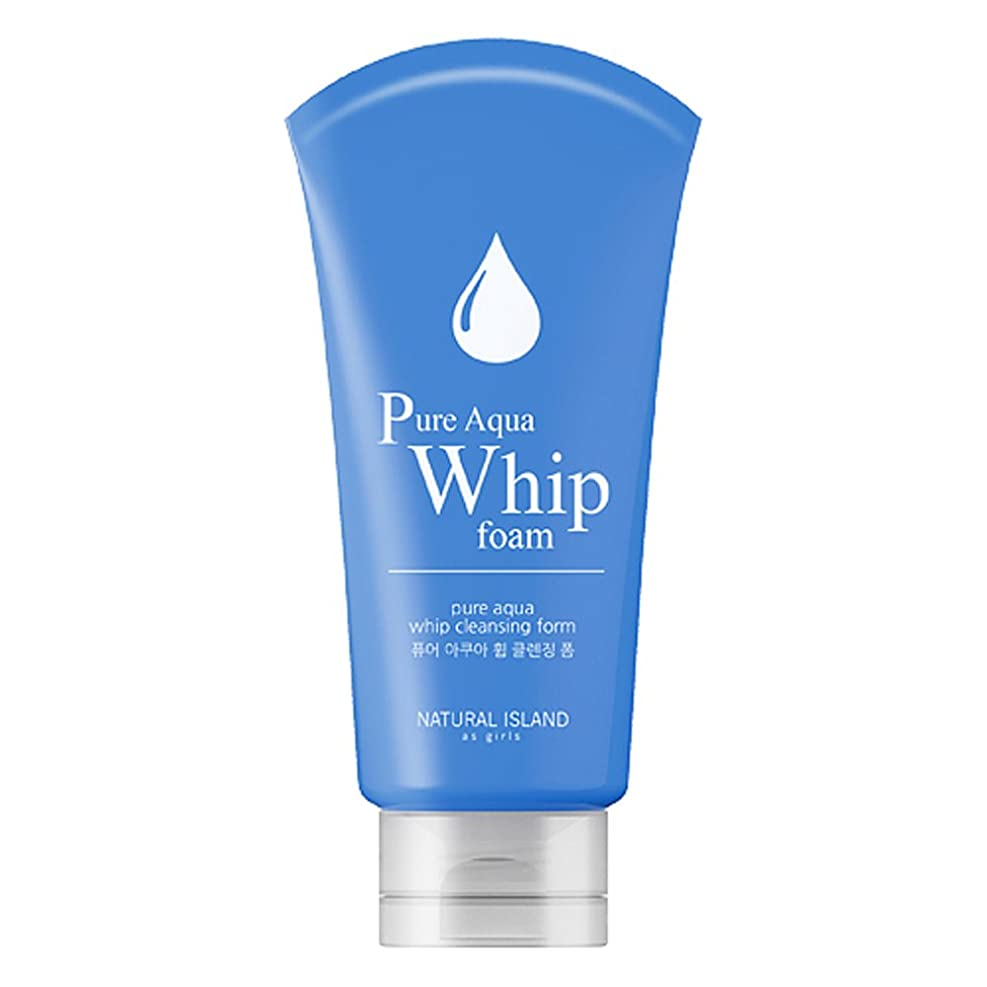 必要条件蒸し器俳優Natural Island Pure Aqua Whip Cleansing Foam 120ml/ナチュラルアイランドピュアアクアホイップクレンジングフォーム120ml [並行輸入品]