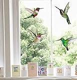4 Pegatinas de Ventana Adhesivas estáticas Grandes y Hermosas para colibrí - Colibrí Pegatinas de Ventana anticolisión para colisión de Aves - Impresión ÚNICA a Doble Cara