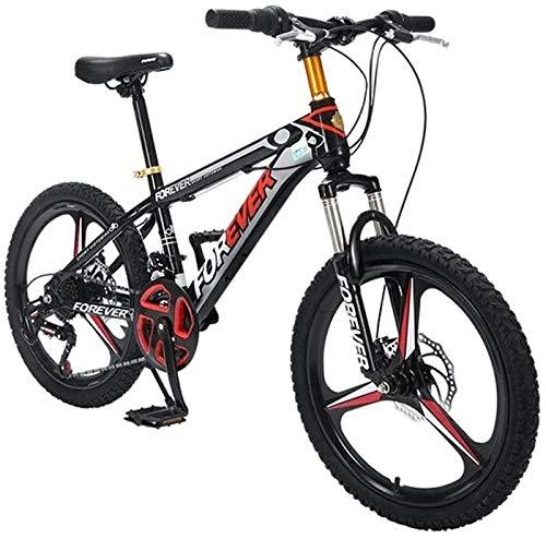 QUETAZHI Mountainbike 24-Gang, 20 Zoll Schubkarre, High Carbon Stahlrahmen, Double Disc Fahrrad, Schubkarre Neutral, Schwarz QU604
