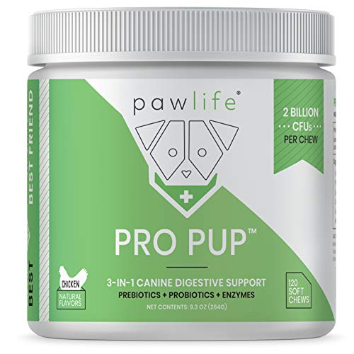 Pawlife Probiotic Treats for Dogs – 120 Veterinarian Formulated Soft Chews with Probiotics, Prebiotics and Digestive Enzymes – Diarrhea & Upset Stomach, Gas, Constipation, Yeast Infection, Acidophilus