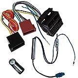 AERZETIX - Kit de Montaje de Radio de Coche estándar - Cable Enchufe de alimentación - Adaptadores de Antena - C11899A