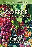 Coffee, From Seed to Cup / Café, Desde La Semilla A La Taza