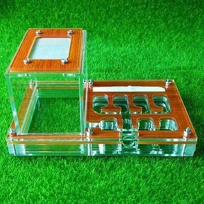 8bayfa Ant-Workshop Transparente Ant Gehäuse Nest Insekt Käfig Farms Feed-Acrylanzeige Trapezförmige Box Ant Villa Kleintierkäfige Kind Lernspielzeug (Farbe: Transparent) (Color : Wooden)
