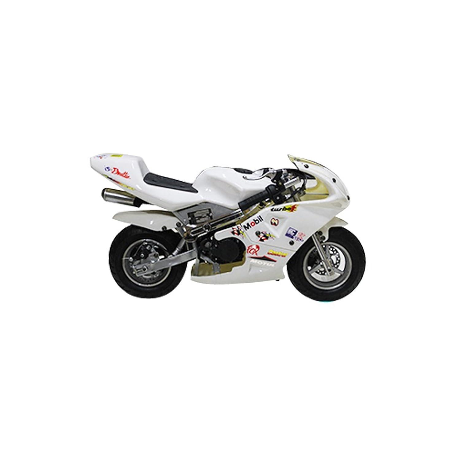 後ろに共和国登山家49cc GP 黒白カラーモデル エンジン ポケバイ ポケットバイク 2ストエンジン 混合油使用