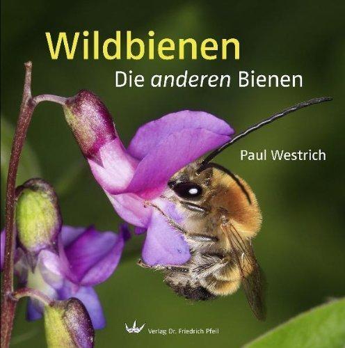 Wildbienen: Die anderen Bienen by Paul Westrich(2013-03-01)