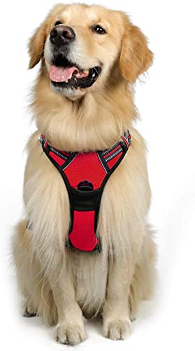 rabbitgoo Dog Harness, No-Pull Pet Harness with 2 Leash Clips, Adjustable Soft Padded Dog Vest, Reflective No-Choke P...