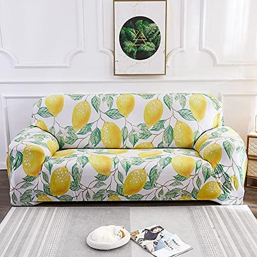 WXQY Funda de sofá elástica elástica,Funda de sofá en Forma de L para Sala de Estar,Funda de sofá Lavable Antideslizante con protección para Mascotas A12 2 plazas