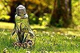 Zopix Poster Umweltschutz Natur Glühbirne Wandbild -