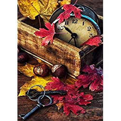 Diymood Painting Acrylic Paint by Number Kits Autumn Woods White Crane Bird for Kids Students Adults Beginner, DIY Maple Leaf Key Alarm Clock Oil Painting Drawing Wall Home Decor 16x20inch