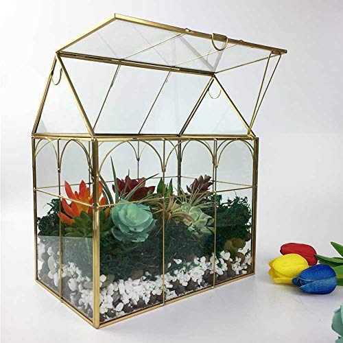"Large Tall Plant Terrarium Glass – Glass Greenhouse Terrarium with Lid, 8.7""X5.9""X10.6"" Inches Indoor Tabletop Orchid Succulent Cacti Terrarium Kit NA (House Black A)"