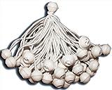 KMH, 50 x Bola Pulpos Lona Bungie Cord para Marquesinas, cenadores, Carpas para Fiestas (#303025)
