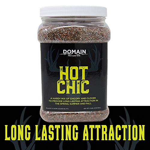 Domain Outdoor Hot Chic Deer Food Plot Seed, Great to Plant in Summer and Fall, 1/2 Acre, Hardy Mixture of PH Tolerant Perennials, Can Last Several Years Chicory - 2 Varieties of Clover