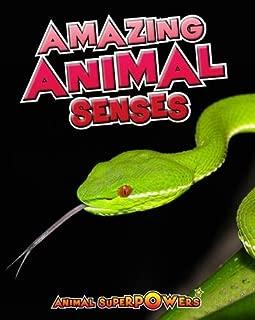 Amazing Animal Senses (Animal Superpowers)