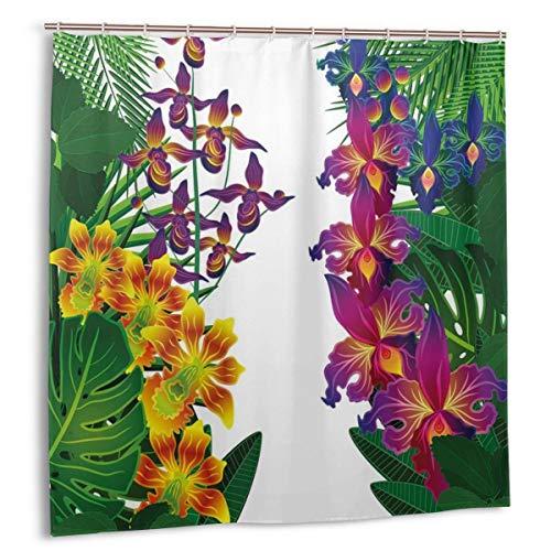 cortinas de baño con dibujos