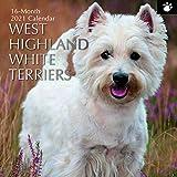 2021 Wandkalender - West Highland White Terrier Kalender, 30 x 30 Zentimeter Monatsansicht, 16-Monat, Hunde und Haustiere Thema, Enthalten 180 Aufkleber auf Englisch