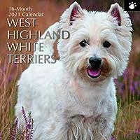 2021年 壁掛けカレンダー - ウェストハイランド ホワイトテリアカレンダー 12 x 12インチ マンスリービュー 16か月 犬とペットのテーマ リマインダーステッカー180枚付き