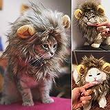 UWOOD Peluca de león para gato, linda mascota disfraz de león con orejas para gato y perro pequeño (marrón)