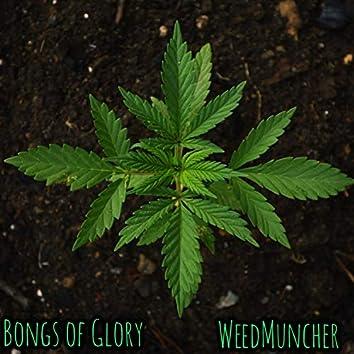 WeedMuncher (Radio Edit)
