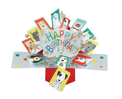 Suki Gifts POP137 Pop Up Grusskarte Happy Birthday Hunde/Geburtstag, mehrfarbig