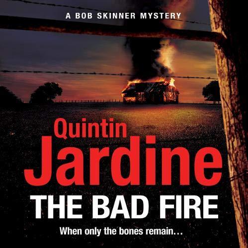 Couverture de The Bad Fire
