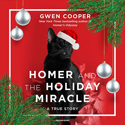 Homer and the Holiday Miracle audiobook cover art